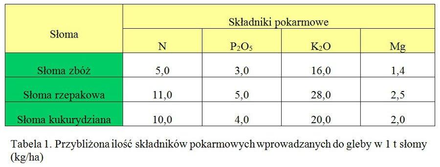 large.sloma_skladniki-pokarmowe.jpg.10200258c536940b33489dc1c1dfc2c7.jpg